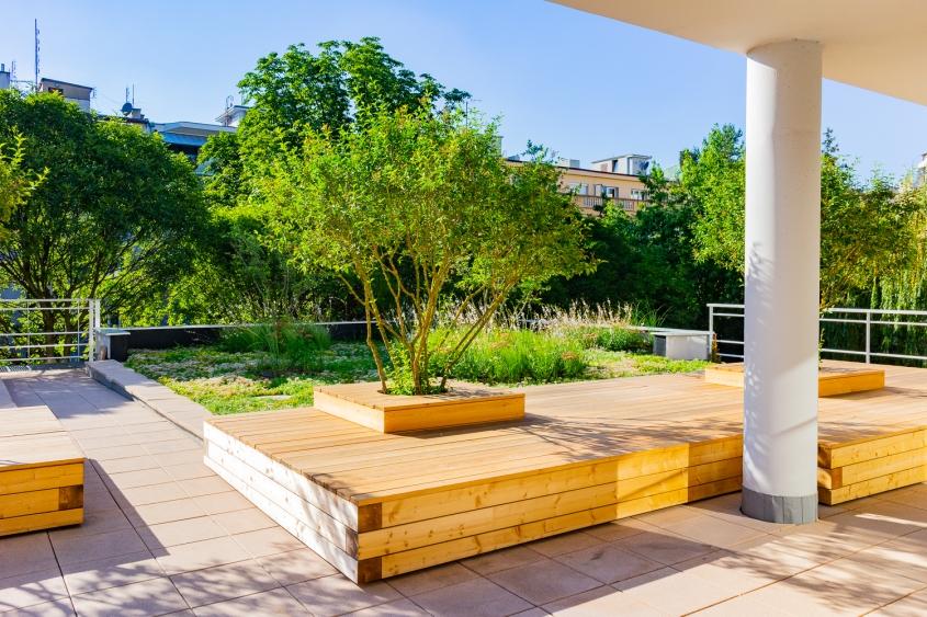 Zahrada v naší nové kanceláři